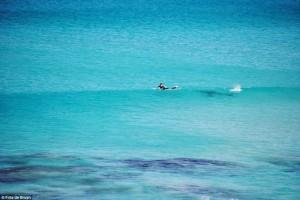 surfistas-perseguido-por-tiburon-02