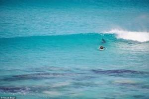 surfistas-perseguido-por-tiburon-03